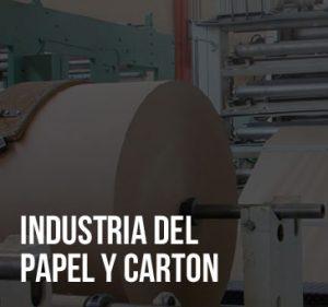 INDUSTRIA DEL PAPEL Y CARTON